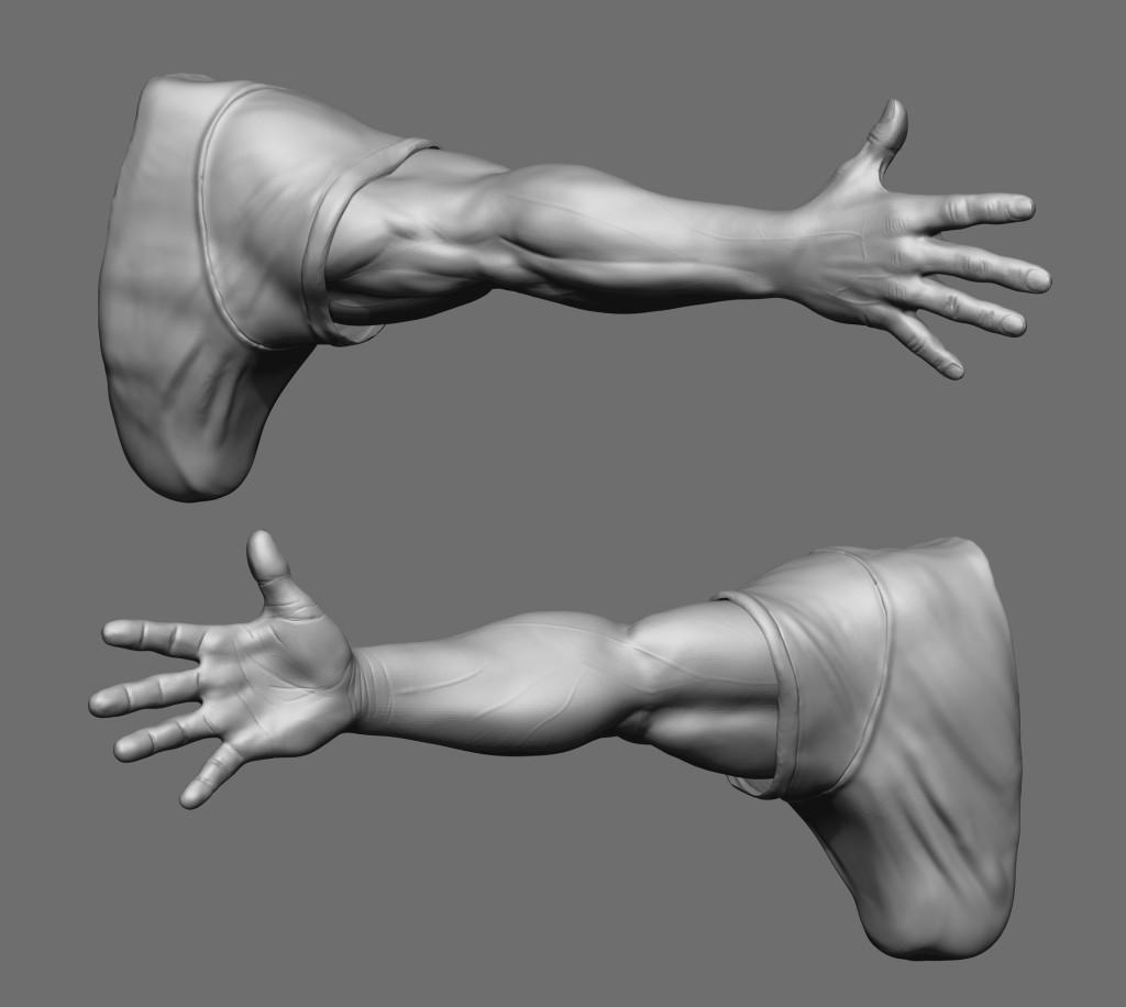 Arm Portfolio